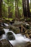 流动的水 免版税库存照片