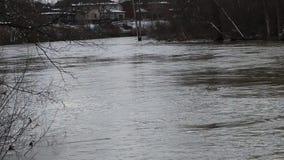 流动的河和移动的草本在平安的自然 股票录像
