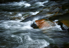 流动的河的细节 库存照片