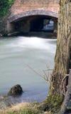 流动的河Cherwell 库存图片