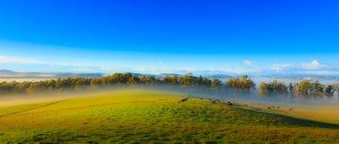 流动的薄雾 库存照片