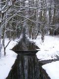 流在冬天 免版税库存照片
