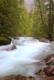 流在冰川国家公园的雪崩小河 库存图片