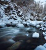 流经一个森林的河在冬天 库存图片