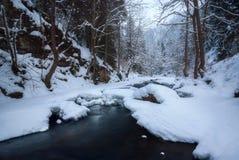 流经一个森林的河在冬天 图库摄影