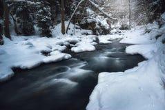 流经一个森林的河在冬天 免版税库存照片