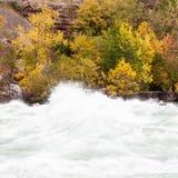 流经尼亚加拉峡谷,加拿大的急流 免版税图库摄影