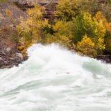 流经尼亚加拉峡谷,加拿大的急流 免版税库存照片