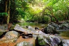 流经岩石的小河的河 免版税库存图片
