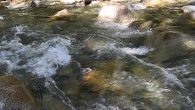 流经林恩小河的水 ?? 影视素材
