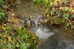 流经草的一条光滑的小河 库存图片