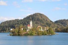 流血平衡海岛湖中间山好的反映斯洛文尼亚 库存图片