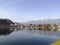流血平衡海岛湖中间山好的反映斯洛文尼亚 库存照片