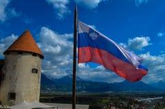 从流血的城堡,斯洛文尼亚的顶端惊人的看法 库存照片