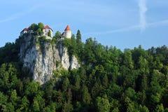 流血的城堡 库存图片