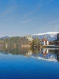 流血的湖斯洛文尼亚冬天 免版税图库摄影