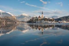 流血的湖斯洛文尼亚 免版税图库摄影