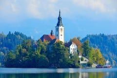 流血的湖海岛、圣马丁天主教会和城堡 风景在斯洛文尼亚,自然在欧洲 有森林的有雾的特里格拉夫峰阿尔卑斯, 库存照片