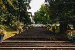 流血,斯洛文尼亚- 2018年9月,8:楼梯向从维拉流血的旅馆的后面布莱德湖有落的叶子的, 图库摄影