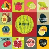 流行艺术难看的东西样式果子海报 减速火箭的果子的汇集 葡萄酒传染媒介套果子 库存照片