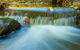 水流量,秋天叶子 库存照片