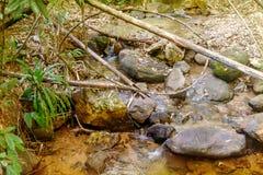流经岩石和一块大石头的河在密林 图库摄影