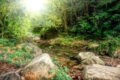 流经岩石和一块大石头的河 库存照片