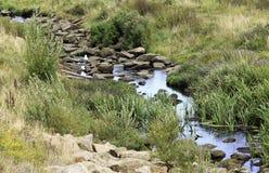 流经岩石的小河 库存照片