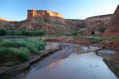 流经峡谷-亚利桑那的小河 免版税库存照片