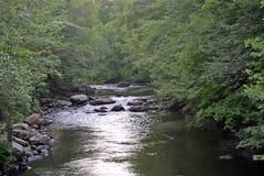 流经森林的河 免版税库存照片