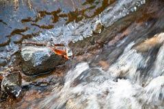 流经石头和岩石的河水在冬天 免版税库存照片