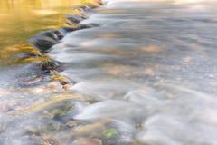 流经金黄和绿色叶子的河 库存图片