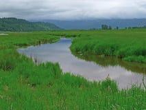 流经Steigerwald蜜饯的小河在Washougal, WA 库存照片