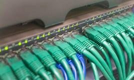 浅兰的插接线互联网缆绳 库存照片