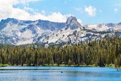 浅安静的声势浩大的湖 库存图片