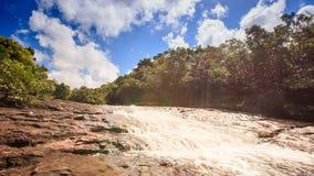 浅山河沿石头流动在热带森林 股票视频