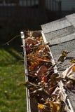 在上面天沟的叶子 免版税库存照片