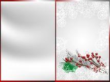 浅浆果中心圣诞节dof重点的前面 库存照片