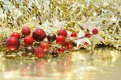 浅浆果中心圣诞节dof重点的前面 免版税库存照片