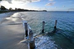 浅滩海湾海滩 斯蒂芬斯港 澳洲调遣葡萄猎人新的南谷威尔士 澳洲 库存图片