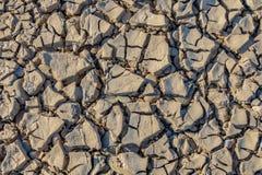 浅灰色干燥地球的纹理 免版税库存图片