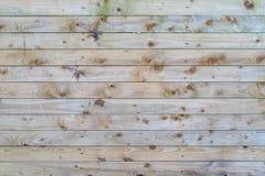浅灰色的木样式-优质纹理/背景 库存图片