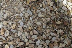 浅灰色的石渣(小卵石)地板纹理,顶视图,小卵石支持 库存图片