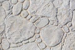 浅灰色的织地不很细详细的石园艺的flo 免版税图库摄影