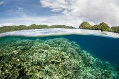 浅珊瑚礁和海岛 免版税库存照片