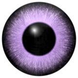 浅粉红色和紫色眼睛纹理 库存例证