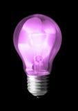 浅紫色的电灯泡 库存照片