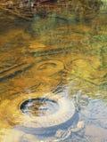 浅被污染的河 免版税库存图片