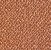 浅褐色的皮革纹理 免版税库存照片