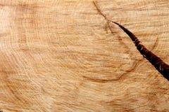 浅褐色的自然木纹理特写镜头背景 免版税库存照片